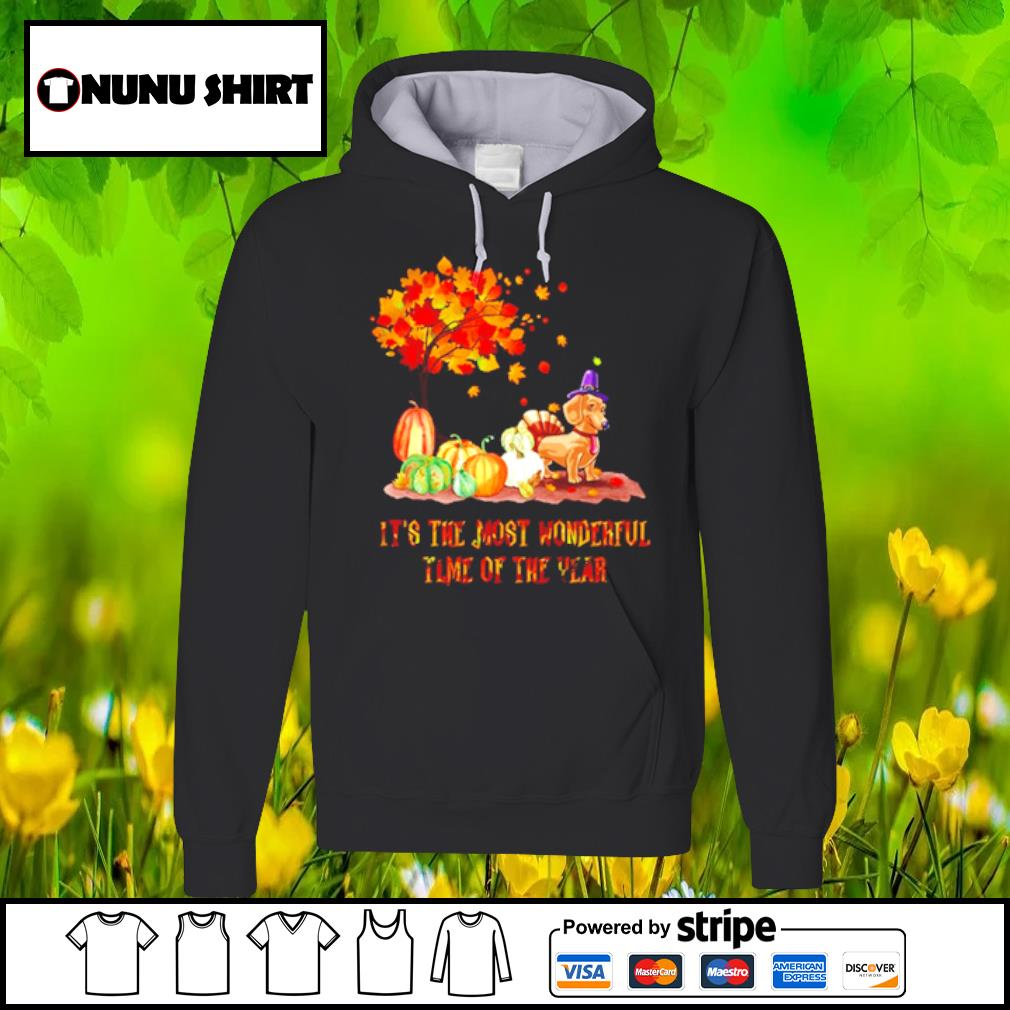Dachshund it_s the most wonderful time of the year halloween s hoodie