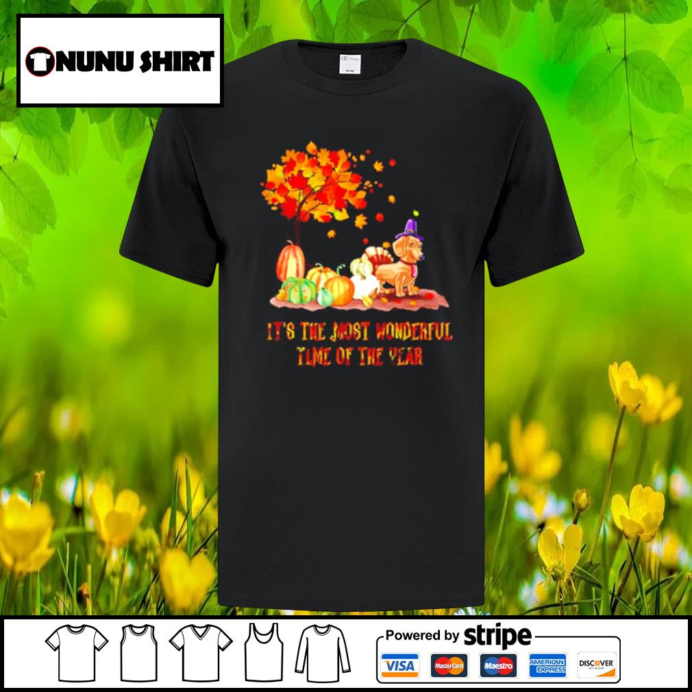 Dachshund it_s the most wonderful time of the year halloween shirt